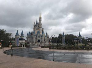 Disney after irma