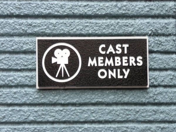 All employees must refer to other employees as cast members at all times