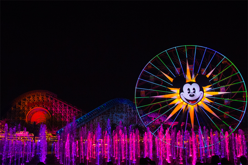 The World of Color Will Enthrall You