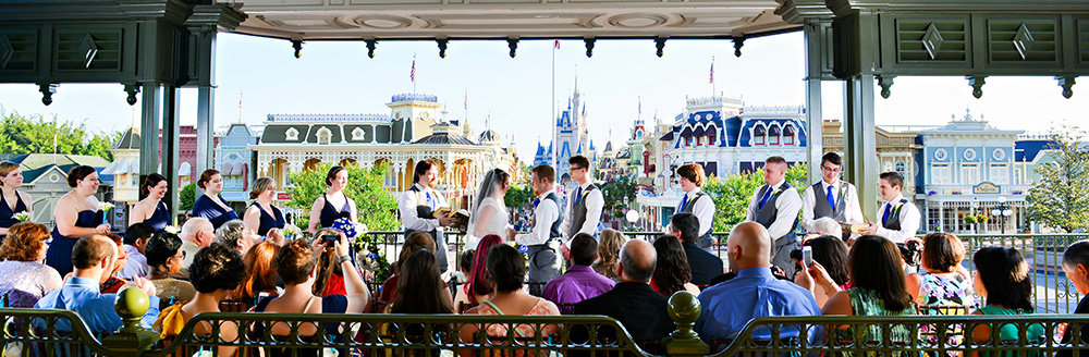 There's an entire community of Disney Wedding online